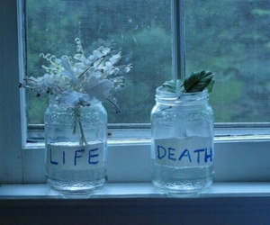 death, life, and flowers image