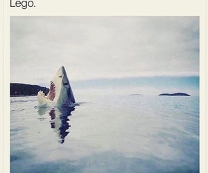 funny, lol, and lego image