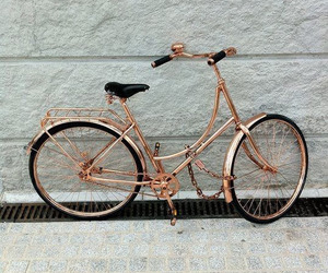 bike, gold, and rose gold image
