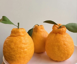 fruit, healthy, and oranges image
