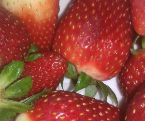 body, strawberry, and fitness image