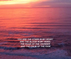 quotes, sea, and sunset image