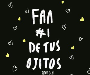 frases, love, and fan image
