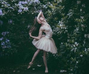 art, lauren cuthbertson, and ballerina image