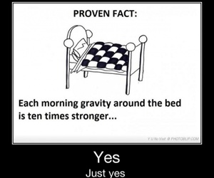 bed, gravity, and morning image