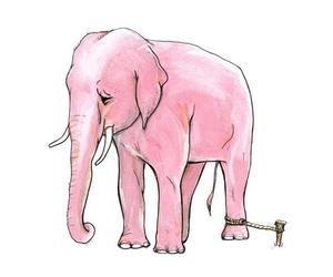 pink, elephant, and sad image