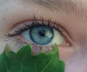 eyes, green, and ojos image