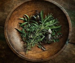 herbs, magic, and rosemary image