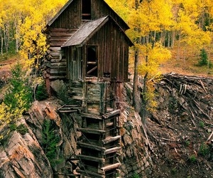 camp, forest, and tree house image