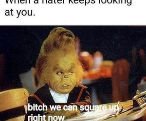 funny, grinch, and haters image