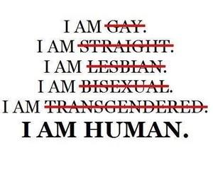 human, gay, and lesbian image