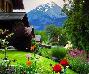 chalet, switzerland, and vacation image