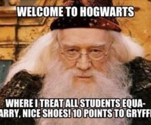 books, dumbledore, and film image