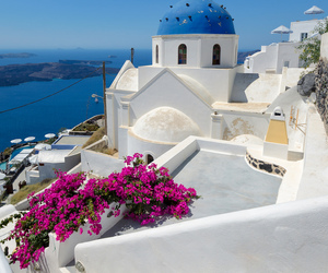 Greece, flowers, and santorini image
