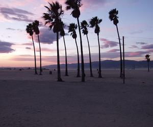 Venice beach image