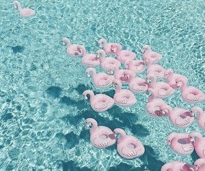 summer, pink, and flamingo image