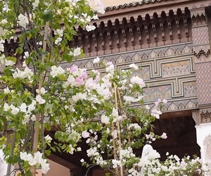 art, flowers, and marocco image