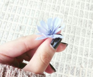 beautiful, black nails, and flower image