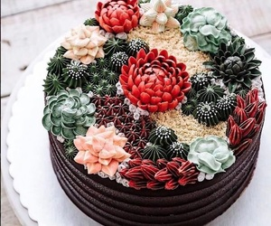cactus, cake, and flowers image