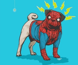 dog, pug, and spiderman image