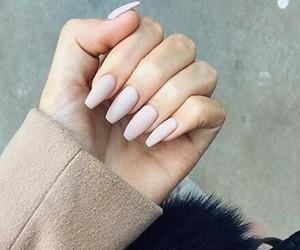 nails, fashion, and hand image
