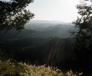 california, greenery, and hike image