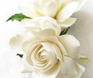 beautiful, flores, and primavera image