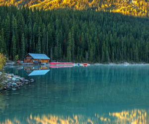 adventure, Alberta, and autumn image