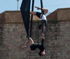 aerial, duo, and silks image