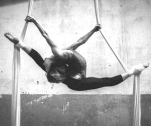 aerial, silks, and flexibility image