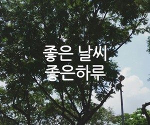 weather and 날씨 image