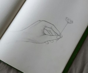 drawing, flower, and hand image