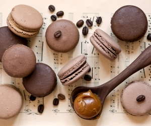 beans, chocolate, and macaron image