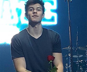 icon and shawn mendes image