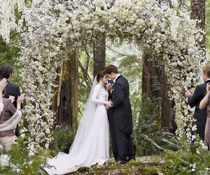 amazing, bella swan, and view image