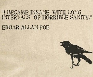 quote, insane, and poe image