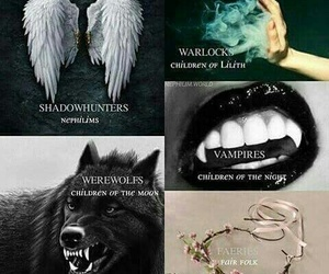 shadowhunters, vampire, and werewolf image