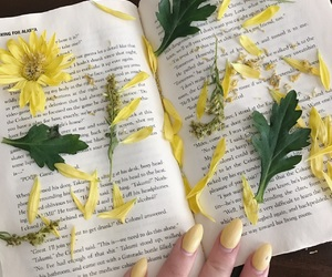 aesthetic, john green, and flowers image
