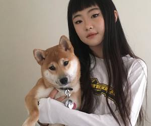 dog, girl, and ulzzang image