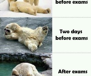 after, before, and school image
