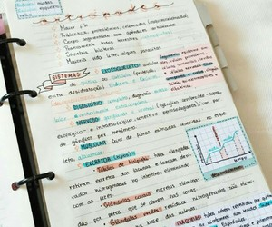 motivation, study, and português image