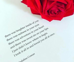 poetry, rose, and love image