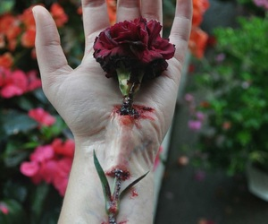 dark, hurt, and roses image