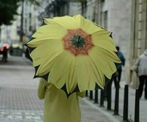 Image by Ángela