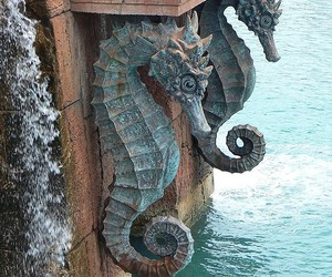 ocean and seahorse image