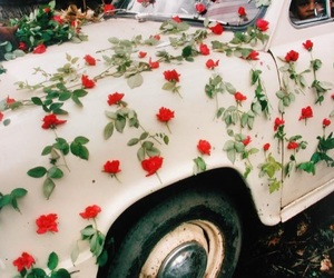 car, flowers, and rose image