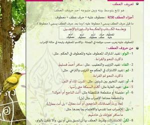 افهم, اللغة_العربية, and دراسةً image