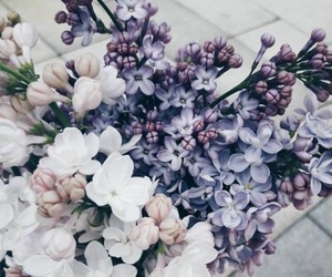 flowers, love, and aesthetic image