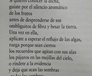 frases, tierra, and poesía image