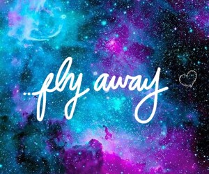away, gokce, and fly image